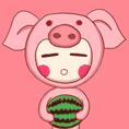 12生肖猪